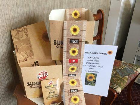 Care Home Sunflower Challenge