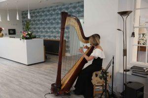 Harpist at reception