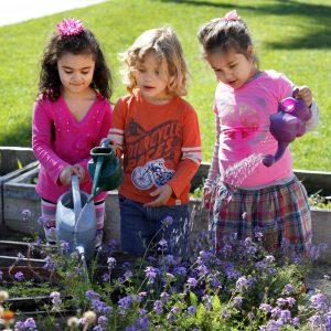Nazareth School San Diego Pre K News