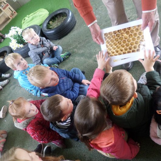 Lune Valley Bees visit