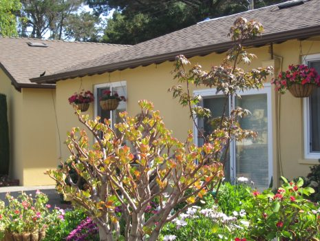 Renovations in Progress at Nazareth House San Rafael