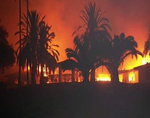 Homes and palm trees ablaze in Skirball Los Angeles County California